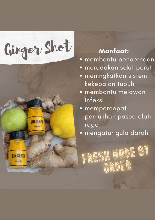 Gingiber Indonesia